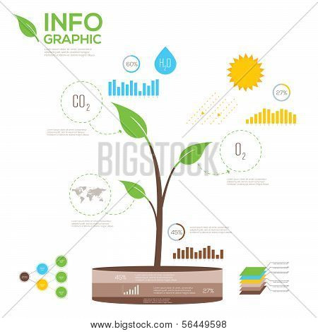 Ecology infographics collection, charts, symbols, graphic vector elements.