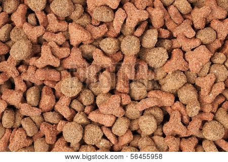 Cat Biscuits Or Kibbles