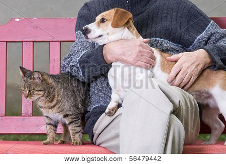 Man With Dog And Cat