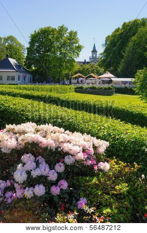 OSLO - JULY 16: Flowers in the Vigeland Park July 16, 2009 in Oslo, Norway