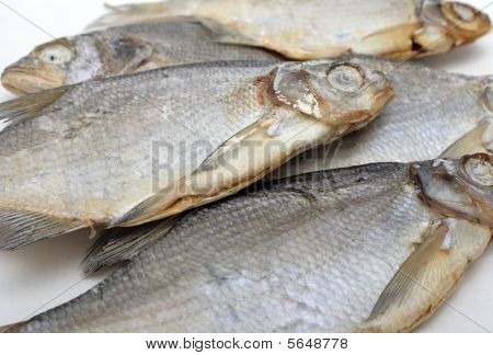 Dried Fish, Background