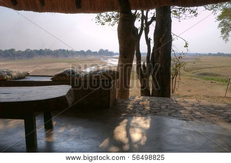 Arbor in South Luangwa National Park in dusk, Zambia, Africa