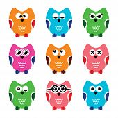 stock photo of angry bird  - Decorative colorful owl icons isolated on white - JPG