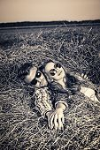 picture of haystacks  - Romantic young couple in casual clothes sitting together in haystack - JPG