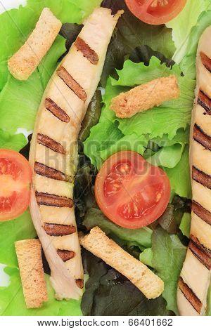 Close up of caesar salad.