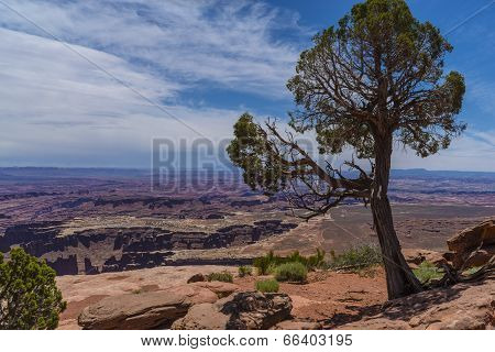 Grand View Point Overlook