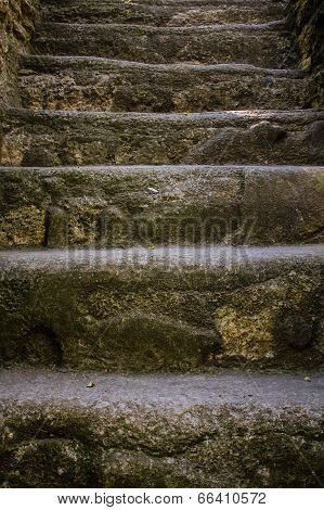 Mayan Piramide Staircase Tikal Guatemala