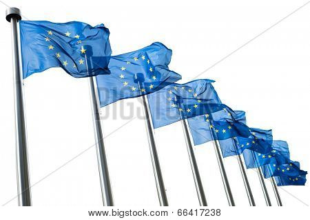 European Union flags isolated on white background