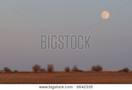 Moonrise Over Farm Field