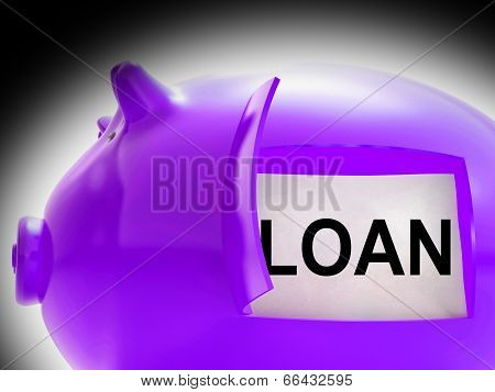 Loan Piggy Bank Message Means Money Borrowed Or Creditor