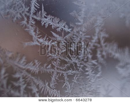 Ice Crystals On A Window Winter Background