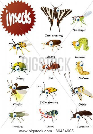 Vector Cartoon Insects Big Set