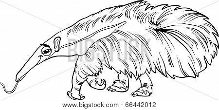 Anteater Animal Cartoon Coloring Book