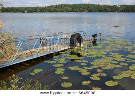Lake's pier