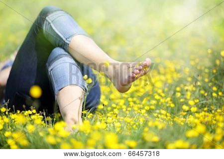Relaxing in a meadow full of buttercups in the summer sun