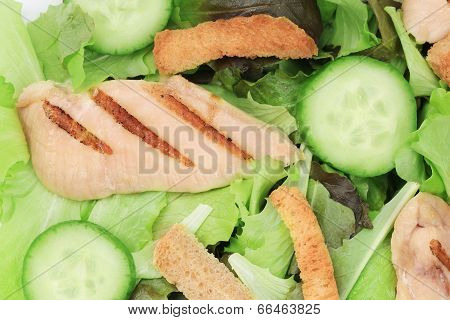 close up of tasty and fresh ceaser salad