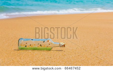 Bottle with Fresh spring green grass and butterfly inside on a beach