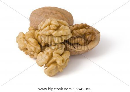 Close-up Of A Walnut. Image Content A Clipping Path For Desiners