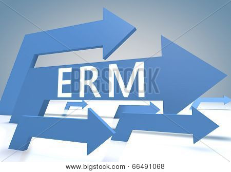Enterprise Risk Resource Managament