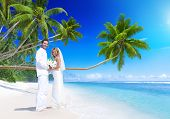stock photo of samoa  - Couple getting marriage on the beach - JPG
