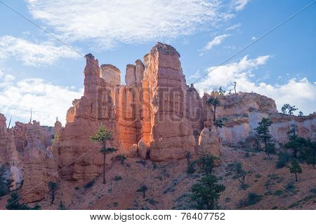 Bryce In Late Afternoon Sun
