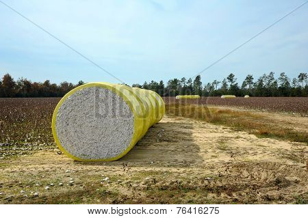 Bale Of Cottons