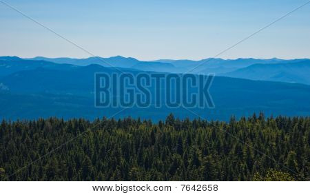 Scenic view of Mountains and forest