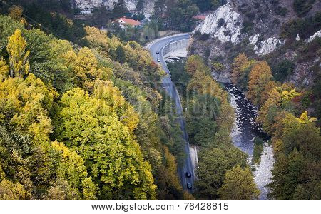 Beautiful Autumn Trees Near A Road And A River