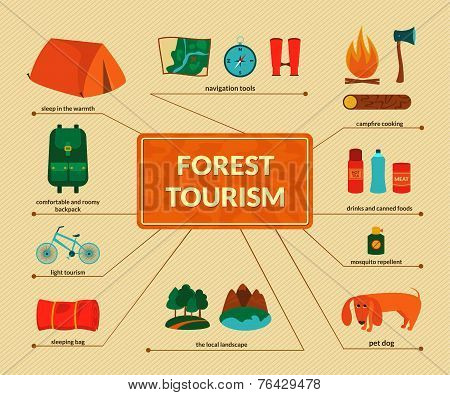 Camping equipment, vector infographics
