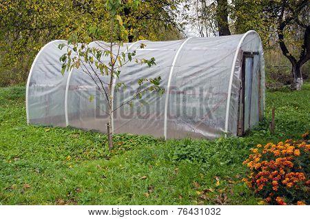 Plastic Greenhouse Hothouse In Autumn Farm Garden