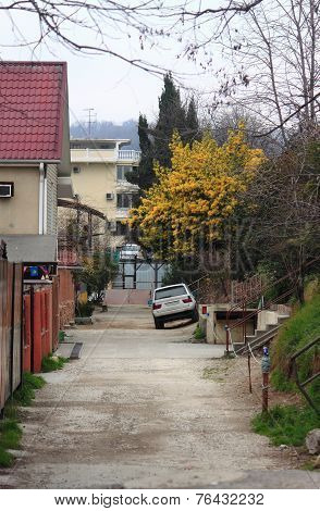 street landscape in Adler, the Big Sochi