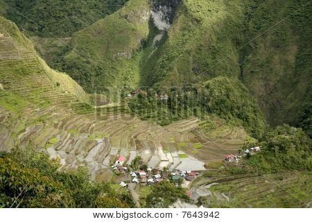 Ifugao Rice Terraces Batad