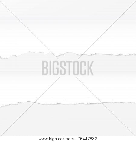 Ripped Paper Template Isolated On White