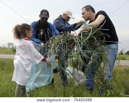 People Cleaning Grassland