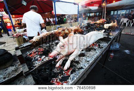 Backing A Pig On A Fair