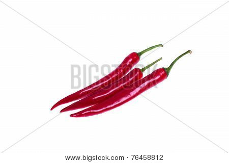 Isolated three chili pepper