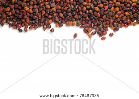 Dried rose hips isolated