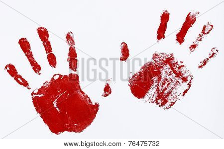 Fingerprints And Hands