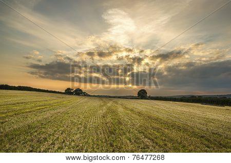 sunset in farm fields, cornwall, uk