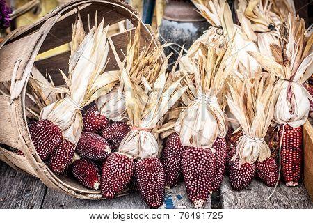 Decorative Red Corn at Market