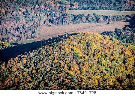 Autumn Hillside Landscape