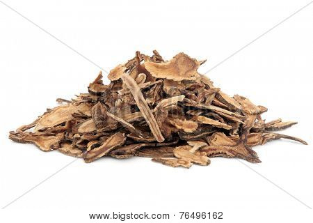 Hog fennel root used in chinese herbal medicine over white background. Qian hu. Peucedanum.