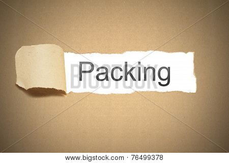 Brown Package Paper Carton Torn To Reveal White Space Packing