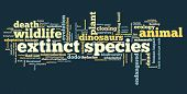 pic of species  - Extinct species  - JPG