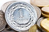 picture of zloty  - Polish zloty coins - JPG