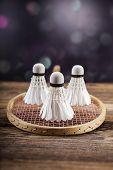 pic of shuttlecock  - A set of badminton - JPG