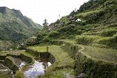 stock photo of ifugao  - the world heritage ifugao rice terraces on the steep mountain slopes of batad in northern luzon in the philippines - JPG