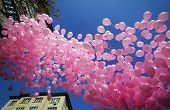 pic of sympathy  - In memory of women who died of breast cancer and a sign of sympathy to their relatives were released hundreds of pink balloons - JPG