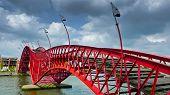 picture of pythons  - The Python Bridge a pedestrian bridge in Amsterdam - JPG
