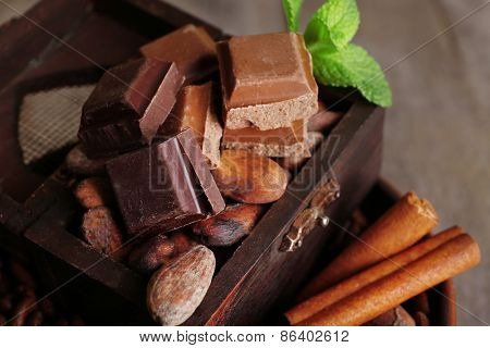 Still life with set of chocolate, nuts ans spices, closeup